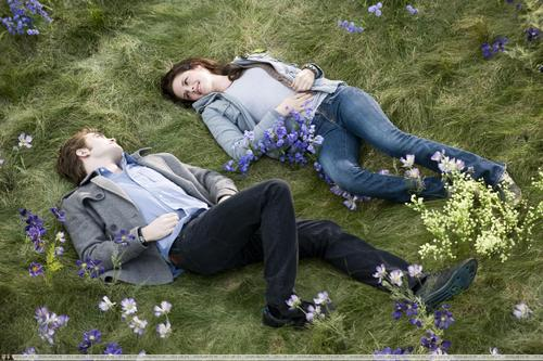 NEW!!!! New Moon HIGH QUALITY Stills