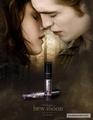 New Edward & Bella Poster - twilight-series photo