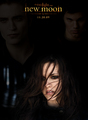 TWILIGHT SAGA Fanmade Posters + pics - twilight-series photo