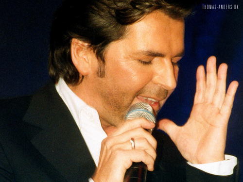 Modern Talking achtergrond containing a business suit titled Thomas Anders
