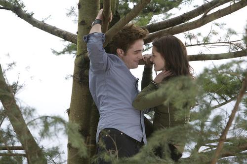 Twilight Movie HIGH RESOLUTION Stills