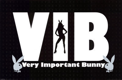 Very Important Bunny - playboy Photo