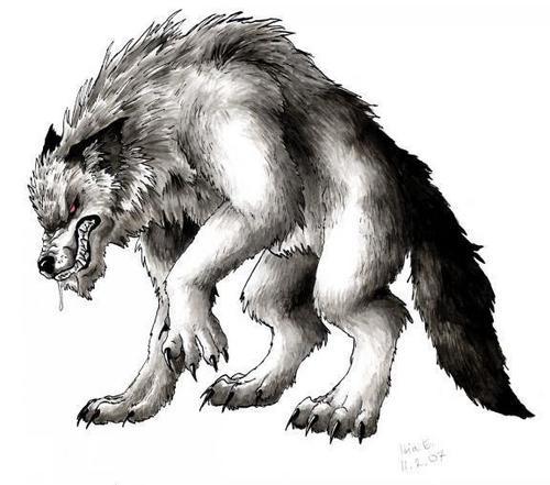 Mean chó sói, sói Grrrr
