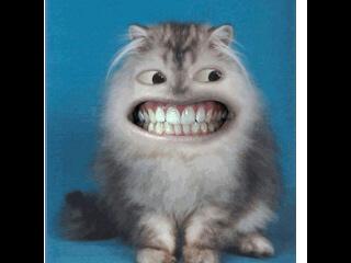 *KEEP SMILING*