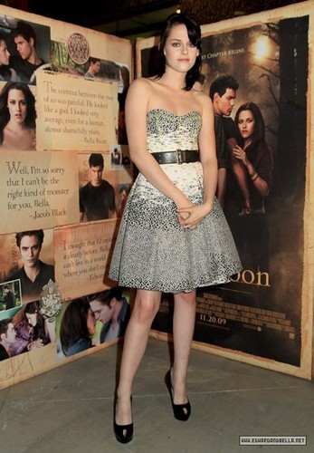 """11.17.09 - """"New Moon"""" Knoxville Screening"""