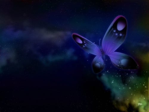 Blue Butterfly,Wallpaper - butterflies Wallpaper