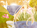 Chobits WP - chobits wallpaper