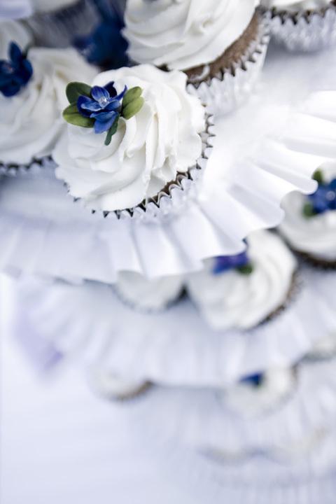 http://images2.fanpop.com/image/photos/9000000/Cupcake-cupcakes-9089857-480-720.jpg