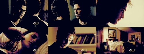 Damon and Elena picspam