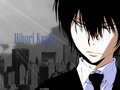 Hibari Kyoya - katekyo-hitman-reborn wallpaper