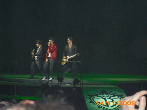 The Jonas Brothers wallpaper containing a concert entitled Jonas Brothers concert in Antwerp (Belgium)