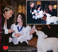 More Mike And Tie-grrrs - michael-jackson photo