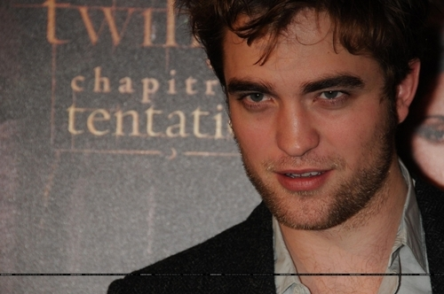 Twilight Series wallpaper called Photocall in Paris ~ France November 10