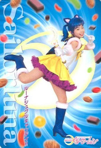 Pretty Guardian Sailor Luna (from PGSM)