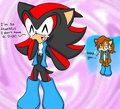 Shadow wears Sally's clothes - shadow-the-hedgehog photo