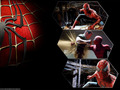 Spiderman wallpapers - peter-parker-and-mary-jane-watson wallpaper