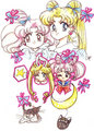 Usagi & Chibiusa  - sailor-senshi fan art