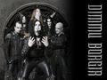 dimmu borgir - dimmu-borgir wallpaper