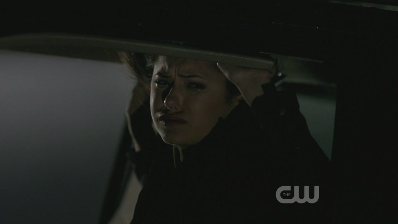 http://images2.fanpop.com/image/photos/9100000/1x10-The-Turning-Point-the-vampire-diaries-tv-show-9123610-1280-720.jpg
