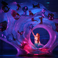 Ariel in her Grotto