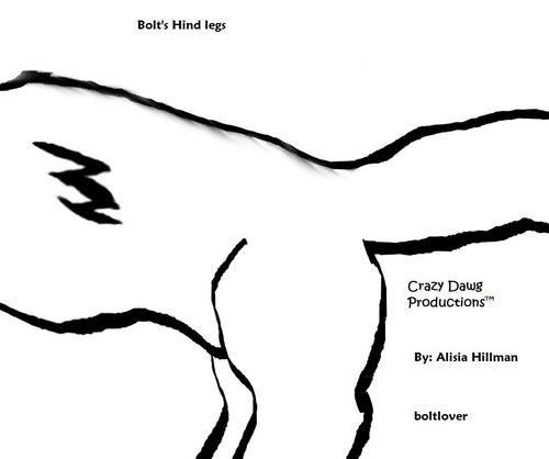 Bolts hind legs.jpg
