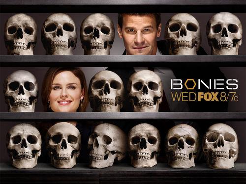 Temperance Brennan پیپر وال called Bones پیپر وال <3