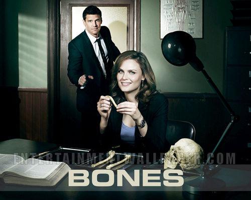 Temperance Brennan fond d'écran titled Bones fond d'écran <3