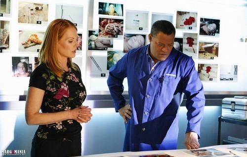 CSI: LV - 10.09 - Appendicitement - Promotional mga litrato