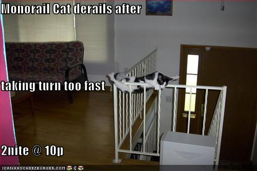 Кошки LOL