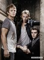 Charlie, Jamie and Cameron - twilight-series photo