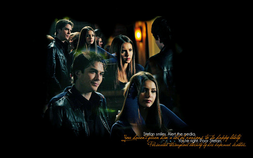 Damon / Elena - Liebe them together <3