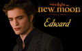 Edward New Moon - edward-cullen-vs-jacob-black wallpaper