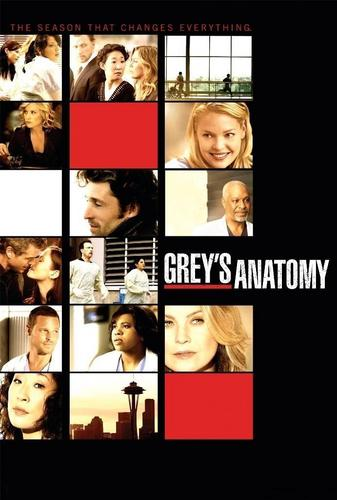 Grey's Anatomy Season 6 Poster