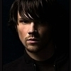 How long have I been in this storm ? Jared-jared-padalecki-9130801-100-100