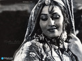 Madhubala wallpaper - madhubala wallpaper