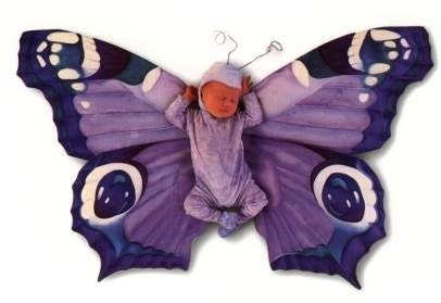 Purple butterfly baby