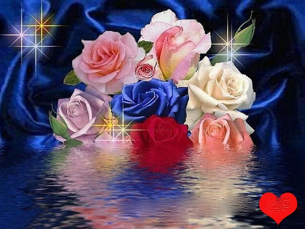 http://images2.fanpop.com/image/photos/9100000/ROSES-love-9113582-1024-768.jpg
