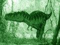 Rex Hunting