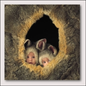 Sweety Babies door Anne Geddes