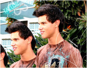 Taylor Lautner Fan Art