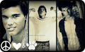 Wallpapers of Taylor Launter