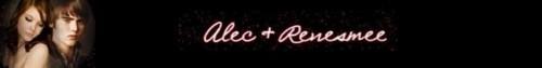 alec + renesmee