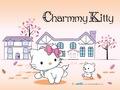 charmy wallpaper