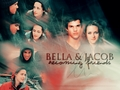 jake and bella - jacob-and-bella wallpaper