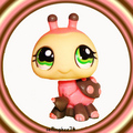 littlest pet shop ladybug 1264 - littlest-pet-shop photo