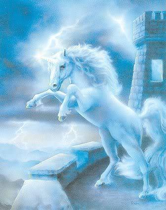 Unicorn castillo