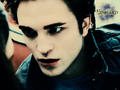 edward-cullen - E.Cullen Wallpapers <3 wallpaper