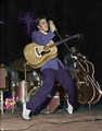 Elvis Presley On Stage 50's, Live in Miami, Florida