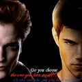 Made by me - twilight-series photo