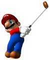 Mario Golf: Toadstool Tour - mario-and-luigi photo